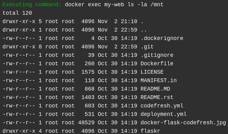 mount volume with docker run